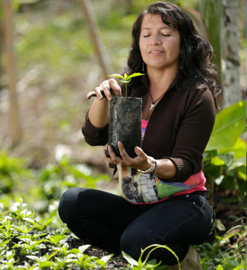 Coffee Ecological Foundation (FEC)
