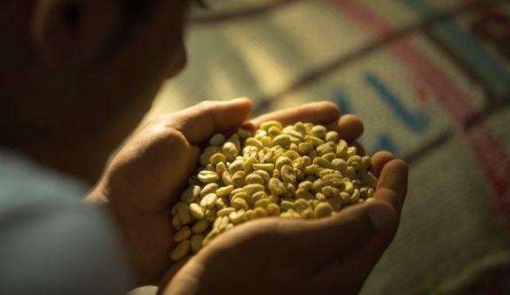 Producción de café de Colombia cae 12% en marzo