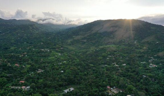 Producción de café de Colombia cae 28% en abril