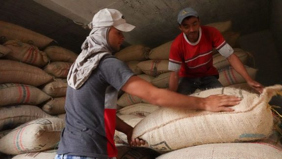 Colombian coffee production grows 12% in June