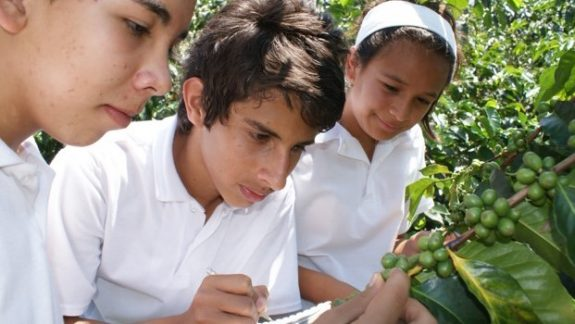 Escuela y Café, the FNC's flagship educational program, is recognized by Global Compact Colombia