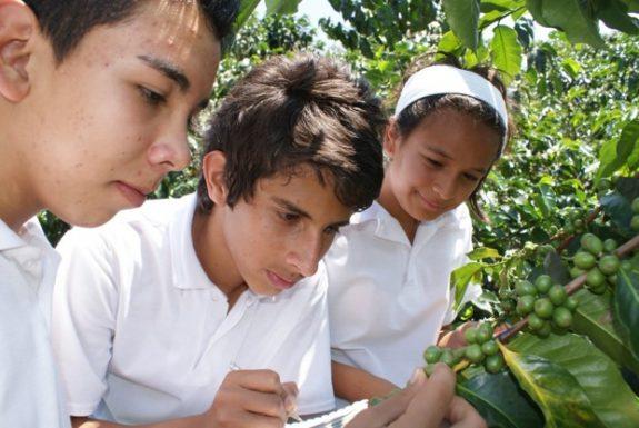 Escuela y Café, proyecto educativo de la FNC, ganadora en los reconocimientos a las buenas prácticas en Desarrollo Sostenible de Pacto Global Colombia