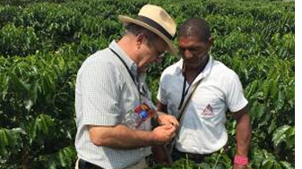 Coffee growers are made aware of importance of Integrated Pest Management