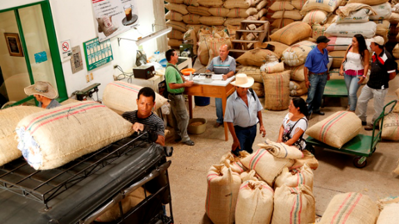 Cooperatives of coffee growers invest USD 14.3 million in social programs in 2017