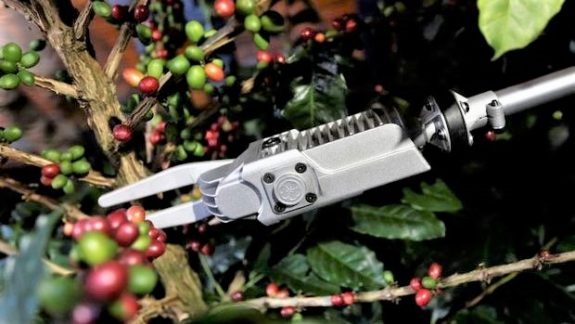 FNC launches innovative, portable coffee harvesting machine