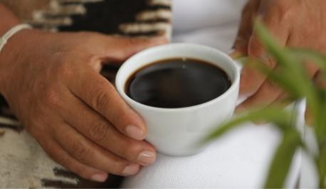 Cafés de Antioquia, Nariño, N. de Santander y Tolima ganan quinta versión de 'Colombia, tierra de diversidad'