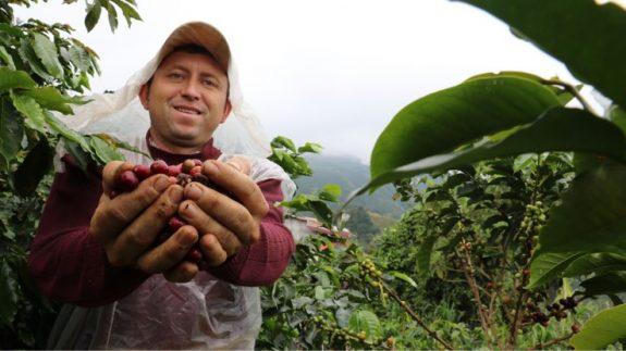 Federación Nacional de Cafeteros y Almacafé donan 2 toneladas de café tostado y molido para los damnificados de San Andrés y Providencia