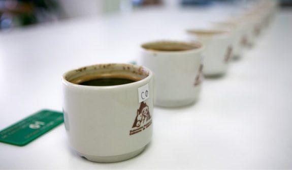 """Más de 1.100 lotes de café inscritos en 6° concurso """"Colombia, Tierra de Diversidad"""""""