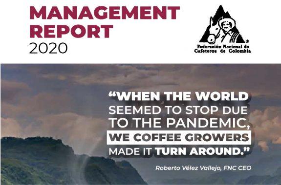 Management Report 2020