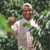 ¿Cómo la Estrategia Jurídica de los cafeteros colombianos defiende y protege sus  intereses?