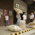 Garantía de compra, el bien público más importante para el caficultor colombiano