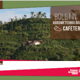 Agro-Climatic Coffee Platform Helps Producers Deal with El Niño