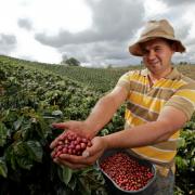 """Federación amplía plazo para acopio de cafés del concurso de calidad """"Colombia, Tierra de Diversidad"""