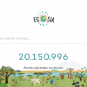 Ecosia search engine will help plant 360,000 native trees in Cauca coffee areas
