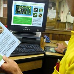 30 mil participantes en cursos virtuales a extensionistas de la FNC