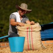 Producción de café colombiano creció 13% en abril