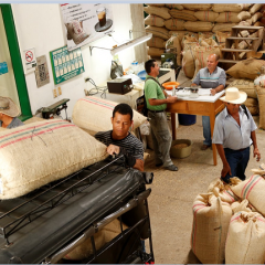 El sector cafetero empieza a aliviar el represamiento de café