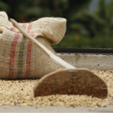 FNC Adopts Measures to Protect Colombian Coffee Growers' Income