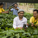 The FNC Extension Service, a Strength of Coffee Growers vs. other Agricultural Sectors