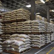Producción de café en Colombia cae levemente en lo corrido del año