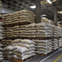Colombian coffee production rises 3.6% in June