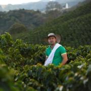 Compromiso con Antioquia cafetera en 2015 superó inversión de 37 mil millones de pesos