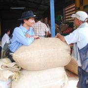 Oficinas de Davivienda en municipios con cosecha cafetera amplían horarios