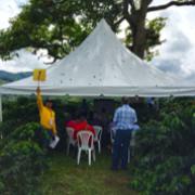 La FNC realizó un Día de Campo sobre recolección asistida para cosecha cafetera
