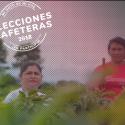 En marcha el proceso electoral gremial más grande de América Latina