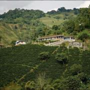 Cafeteros exigen corresponsabilidad a industria mundial en solución a crisis