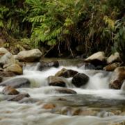 Disponibilidad de agua por persona se ha reducido más de 45% en los últimos 30 años en Colombia