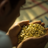 Direct Export of Colombian Coffee in Small Quantities is now a Reality