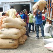 Producción de Café de Colombia cae 7% en junio