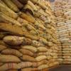 Producción de Café de Colombia aumenta 18% en febrero