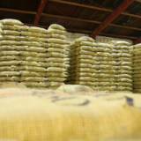 Colombian coffee production rises 32% in May