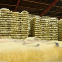 Producción de café colombiano cae 2% en los últimos 12 meses