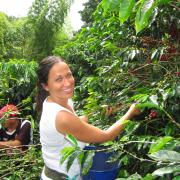 Personajes del mundo cafetero visitan Colombia para conocer el origen de su café