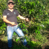 Colombian coffee reaches $54/lb in first auction abroad