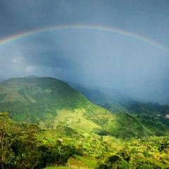 Café de Colombia concreta nueva venta de bonos de carbono