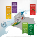 WTR premia el trabajo de propiedad intelectual de Café de Colombia