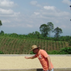 Update on Regulations of Coffee Exports from Colombia