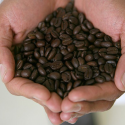 The Importance of Added Value for Coffee Consumers