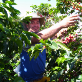 The FNC Produces and Exports Increasingly More Specialty Coffees