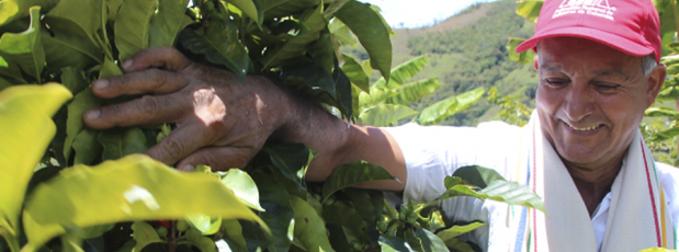 The FNC redoubles efforts to increase profitability of Colombian coffee growers