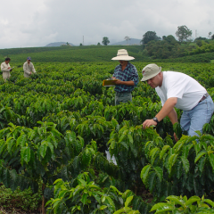 The Colombian Coffee Growers Federation Strengthens its Sustainable Coffee Programs