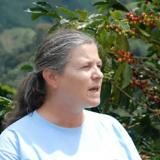 illycaffè-FNC, una alianza en busca de la alta calidad