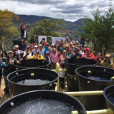 Over 237,000 coffee farms are already sustainable in Colombia