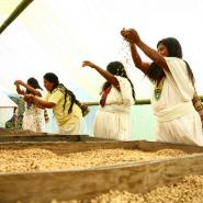 Mujeres cafeteras, cada vez más empoderadas y participativas