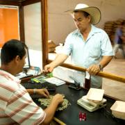 Se restablecen los parámetros históricos del sistema de compra de café pergamino seco