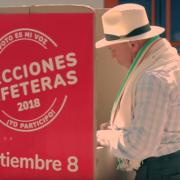 En una semana, cafeteros acudirán a las urnas para elegir a sus líderes gremiales